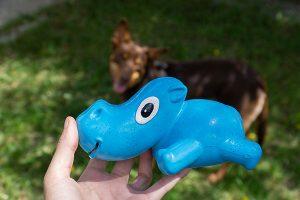 Close-up van de 3-Play-Hippo