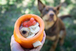 West Paw Toppl gevuld met banaan en speciale ijsblokjes voor honden.